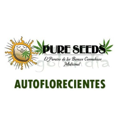 PURE SEEDS SEMILLAS AUTOFLORECIENTES