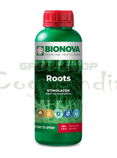 Roots 7