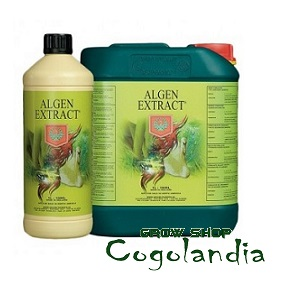 Extracto de Alga 250ml