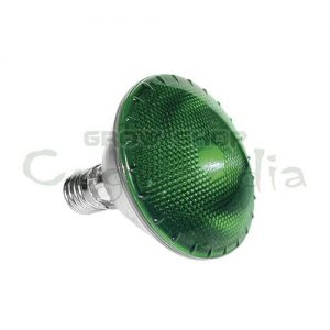 Bulb Dark Night 100w Agrolite 1