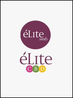 semillas-de-marihuana-elite-seeds