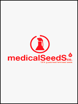semillas-de-marihuana-medical-seeds