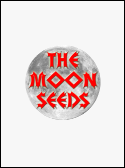 semillas-de-marihuana-the-moon-seeds
