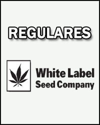 White Label Regulares