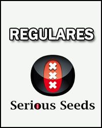 Serious Seeds Regulares