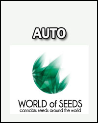 World Of Seeds Auto
