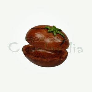 Marijuana seed shape ashtray 3