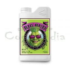 Big Bud - Advanced Nutrients 4